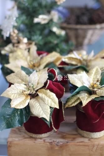 軽井沢クリスマスアレンジ 軽井沢フラワーショップ゚ 軽井沢花屋 軽井沢クリスマスギフトフラワー