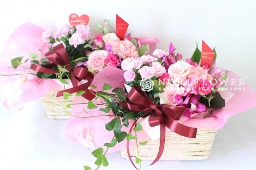鉢物&生花アレンジ母の日フラワーギフト  全国送料無料