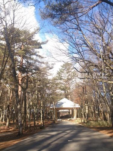 軽井沢高原教会 軽井沢ウェディング 軽井沢ウェディングブーケ