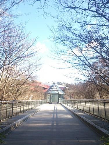 軽井沢石の教会 石の教会 軽井沢ウェディング 軽井沢ウェディングブーケ
